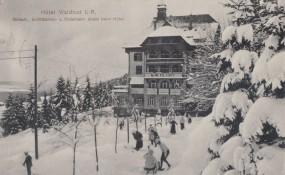 Freudenstadt - Hotel Waldlust I. R. 1912
