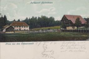 Luftkurort Kaltenbronn - Schwarzwald 1904