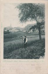 Schönwald (Bad. Schwarzwald) 1901