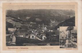 Tennenbronn i. Schwarzwald - Totalansicht - Denkmal 1907