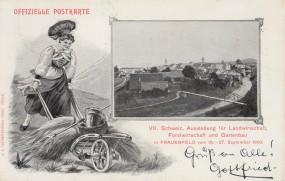 Frauenfeld - VII. Schweiz. Ausstellung für Landwirtschaft, Forstwirtschaft und Gartenbau - 1903
