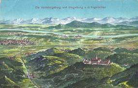 Die Hohkönigsburg und Umgebung a.d. Vogelschau