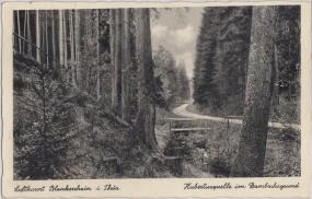 Luftkurort Blankenhain i. Thür - Hubertusquelle im Dambachsgrund 1939