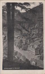 Schwarzwald b. Ohrdruf