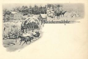 Gruss von der Haidenmühle b/Dresden